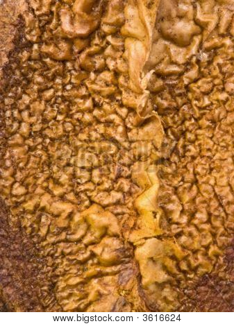 Macro Texture
