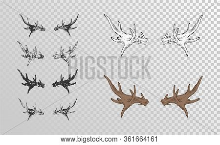 Vector Set Of Hand Drawn Horns Moose With Grunge Elements In Different Versions On A Transparent Bac