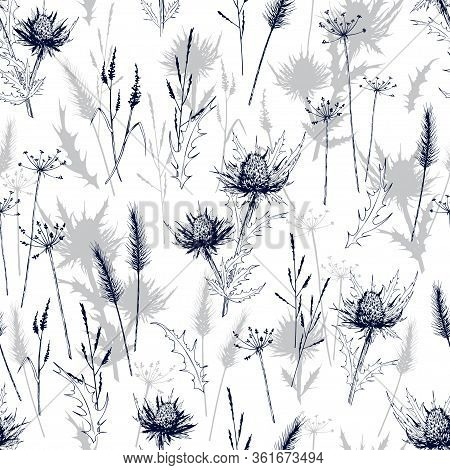 Seamless Pattern With Meadow Wild Herbs And Blue Thistle Flowers. Hand Drawn Vector Illustration Iso