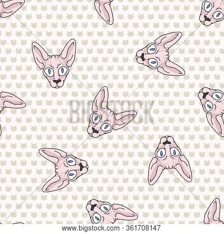 Cute Cartoon Sphynx Kitten Face Seamless Vector Pattern. Pedigree Exotic Kitty Breed Domestic Cat Ba