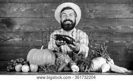 Grow Organic Crops. Organic Pest Control. Man With Beard Wooden Background. Farmer With Organic Vege