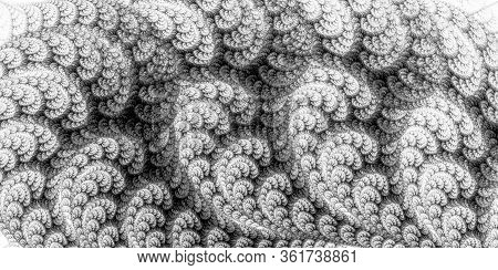 Soft, Fluffy Leaves Fit Snugly Together. The Spirals Of Branches And Leaves Create A Rhythmic Patter