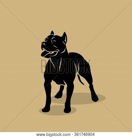American Pit Bull Terrier Dog - Isolated Vector Illustration - Vector