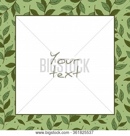 Vector Foliate Frame; Square Frame With Green Branches For Greeting Cards, Invitations, Wedding Card