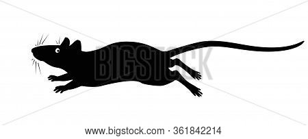 Running Rat - Vector Silhouette For Pictogram Or Logo. Silhouette Of A Rat Or Mouse Galloping Fast F