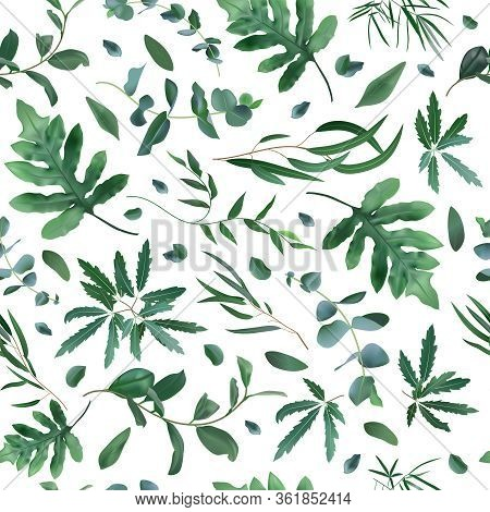 Realistic Plants Pattern. Seamless Leaves Eucalyptus, Fern Plant Pattern, Greenery Foliage Texture V