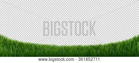 Realistic Grass Border. Green Herb Lawn, Garden Herb Plants Frame, Fresh Lawn Border Element Vector