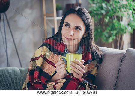 Close-up Portrait Of Her She Nice Attractive Lovely Pretty Brunette Girl Sitting On Divan Covered Ve