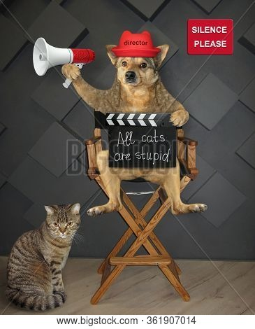 The Dog Director In A Red Hat Is Sitting On A High Wooden Chair And Holding A Megaphone And A Clappe