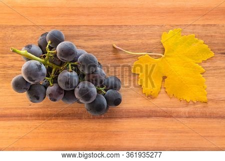 Bunch Of Ripe Pinot Noir Grapes With Yellow Leaf On Wooden Chopping Board