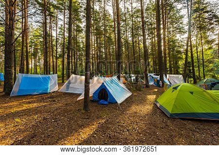 Tourists On A Halt. Tent City In The Summer Forest. Healthy Lifestyle Concept