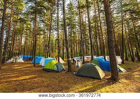 Tourists On A Halt On Vacation. Tent Town In The Summer Forest. Healthy Lifestyle.