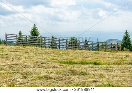 Meadow Fence And Sky