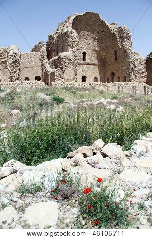Palace In Firuz Abad