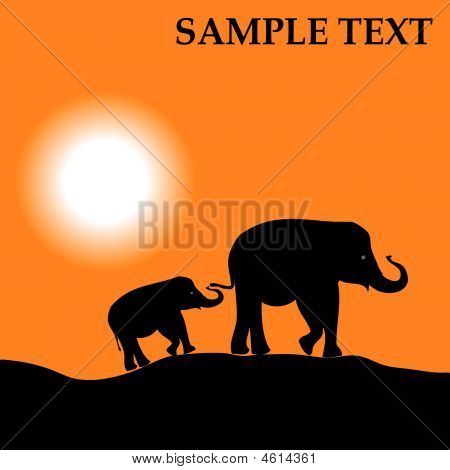 Africa landscape with animals