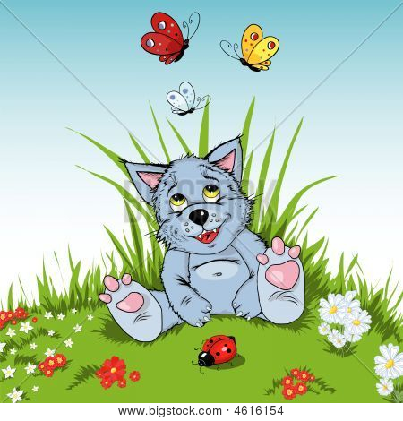 The young wolf sits on a green clearing and admires beautiful multi-coloured butterflies. poster