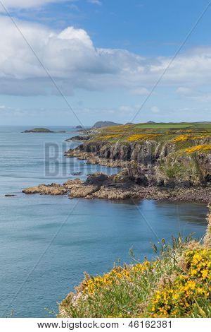 Wales Coast Path Caerfai Bay to St Non`s Pembrokeshire
