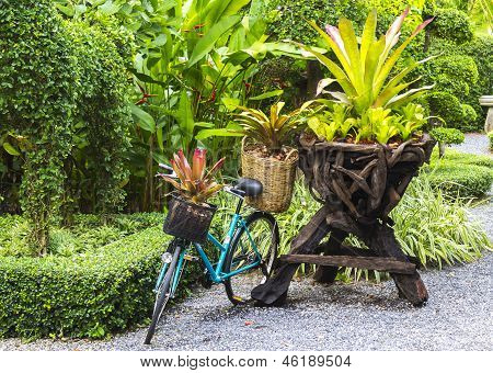 Bicycle Decorated With Plants
