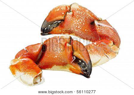 Rock  Crab Claws