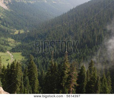 026 Chinook Pass