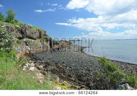 Coast at Dalgety Bay