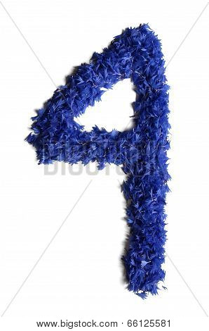 Number 4 Made Of Flowers (cornflowers) Isolated On White Background