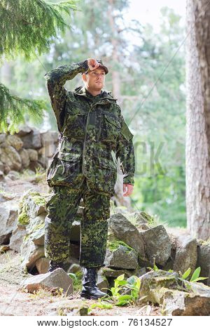 war, army and people concept - young soldier or ranger wearing military uniform in forest poster