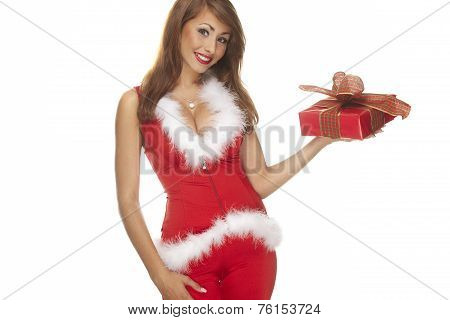 Santa Helper On White Background