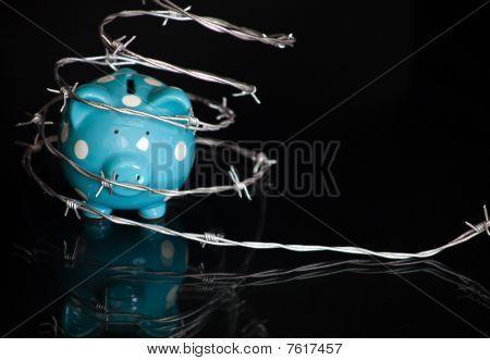 Barbed Wire Piggy