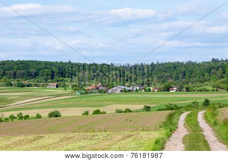 Farm In Summer
