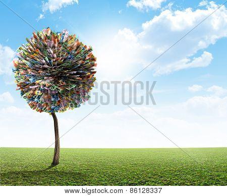 Money Tree Australian Dollar