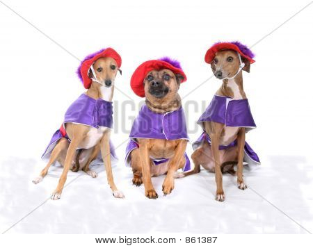 Three Woofkateers