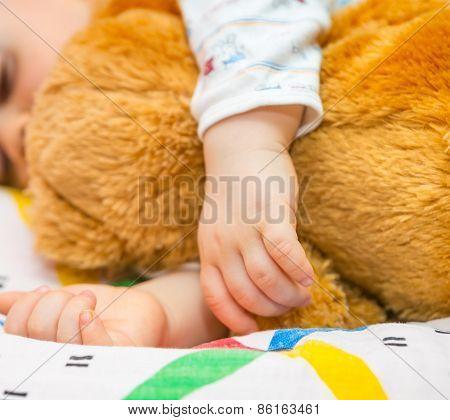 Toddler Hands