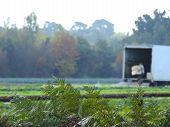 En el campo, trabajadores guardan sus cosechas antes del invierno. poster