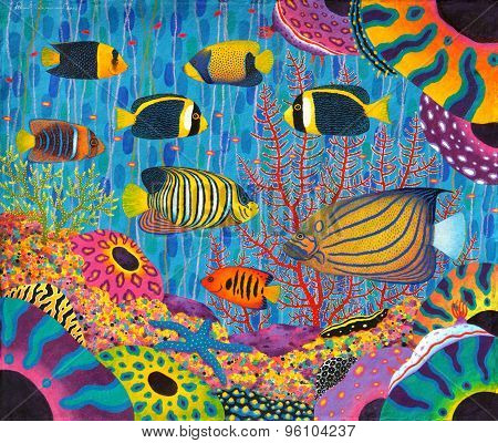 Angelfish Family