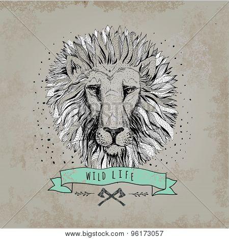 Vector retro lion head design illustration, vintage  logo. Vinta