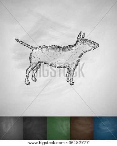 bull terrier icon