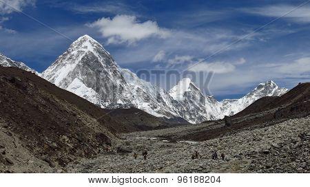 Porter Heading Towards The Everest Base Camp