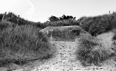 Ruin Germany bunker WW2  on Utah Beach in Normandy, France made during World War II. poster