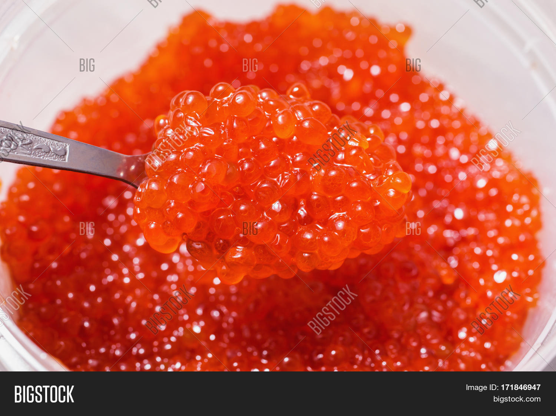 Red Caviar On Spoon Image Photo Free Trial Bigstock
