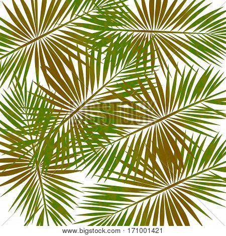 shades of green in palm leaves background