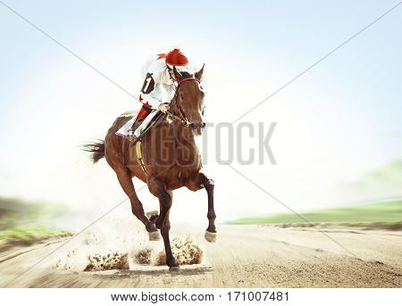 The racehorse coming first on hippodrome track