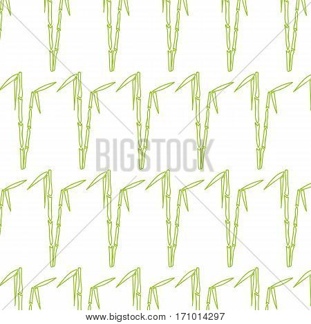 Seamless bamboo pattern for design and decoration.