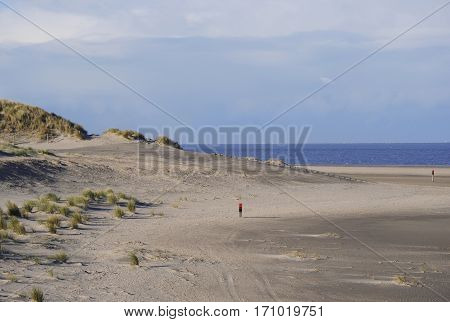 coastal view sand dunes and beach at island Texel North sea Netherlands in winter
