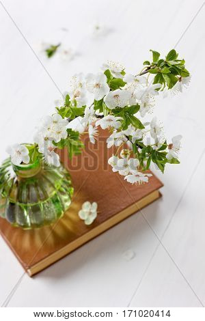 Beautiful blossom branch of cherry-tree in a glass vase with vintage book on a white background.