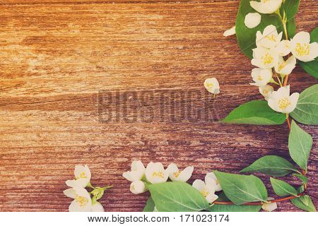 Jasmine fresh flowers and leaves on rusic wooden table, retro toned