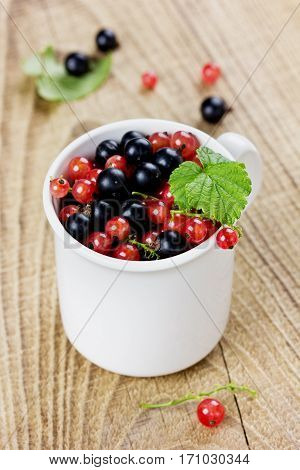 Black currant and red currant in a white cup on a wooden rustic background collection of summer berries.