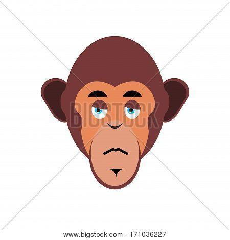 Monkey Sad Emoji. Marmoset Unhappy Emotion Isolated. Chimpanzee Face