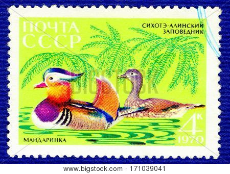 USSR - CIRCA 1970: Postage stamp printed in USSR with a picture of Mandarin duck (lat. Aix galericulata), of the series