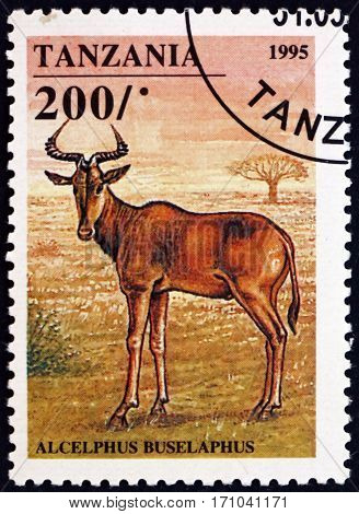 TANZANIA - CIRCA 1995: a stamp printed in Tanzania shows Hartebeest alcelaphus buselaphus is an African antelope circa 1995